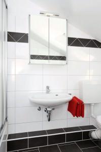 Badezimmerschrank und Waschbecken
